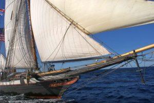 Lynx Pirate ship
