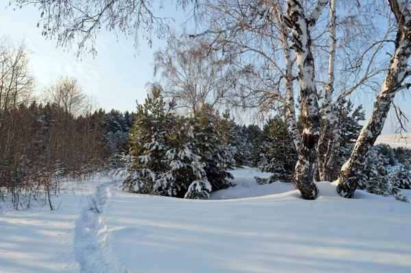 winter_day
