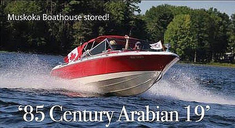 Century Arabian: 19'